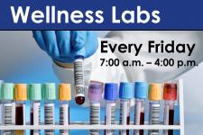 wellness labs