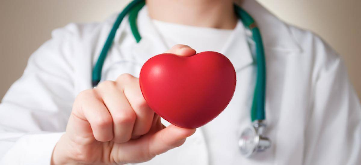 Provider holding a heart